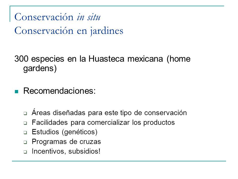 Conservación in situ Conservación en jardines 300 especies en la Huasteca mexicana (home gardens) Recomendaciones: Áreas diseñadas para este tipo de c
