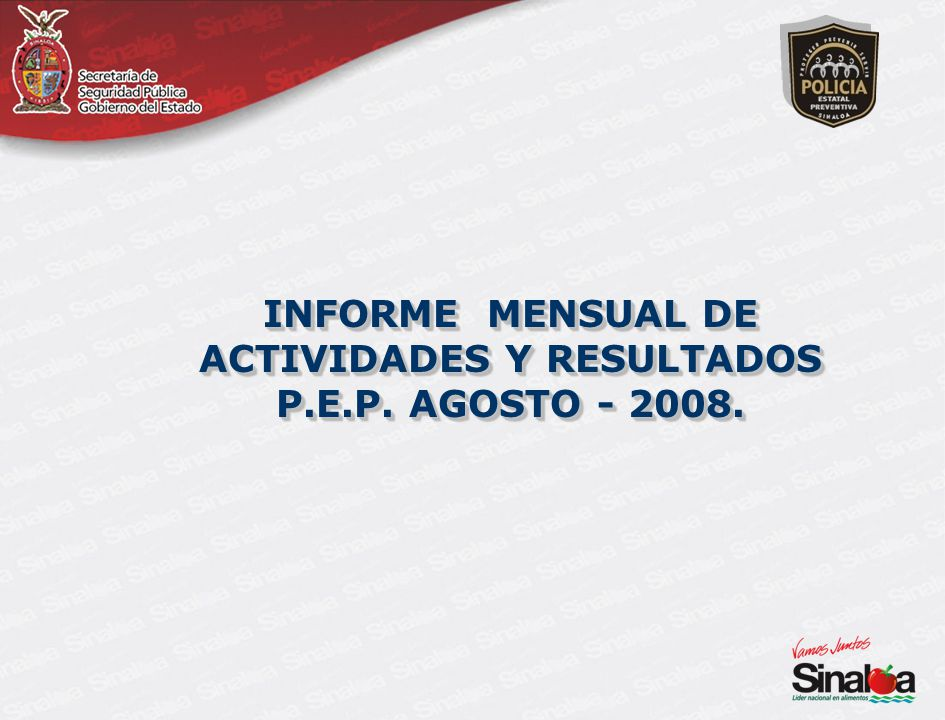 INFORME MENSUAL DE ACTIVIDADES Y RESULTADOS P.E.P. AGOSTO - 2008.