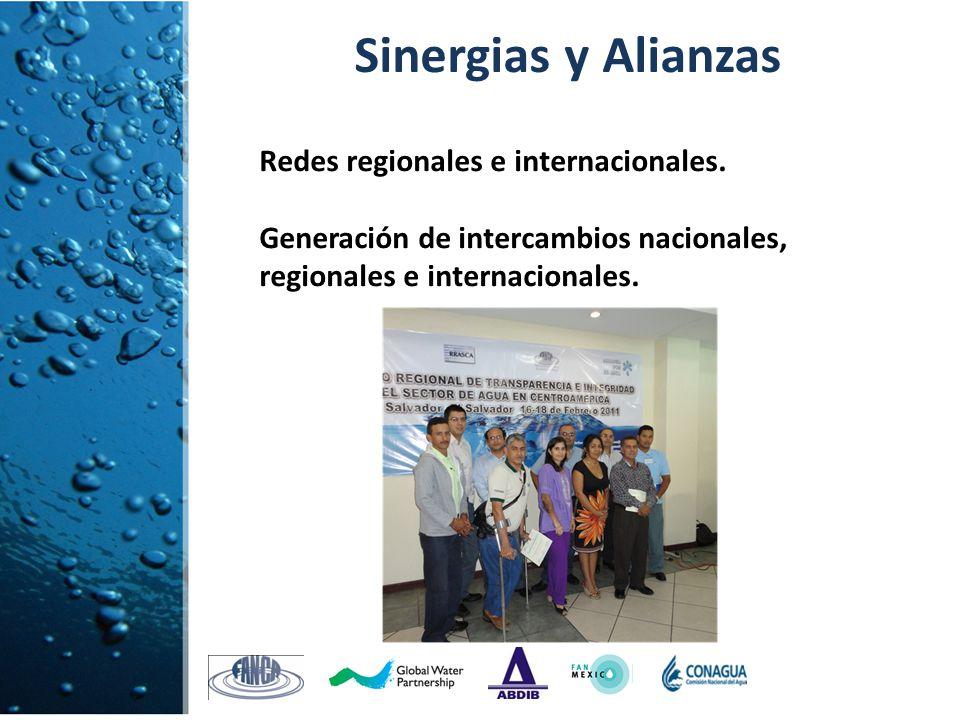 Redes regionales e internacionales. Generación de intercambios nacionales, regionales e internacionales. Sinergias y Alianzas