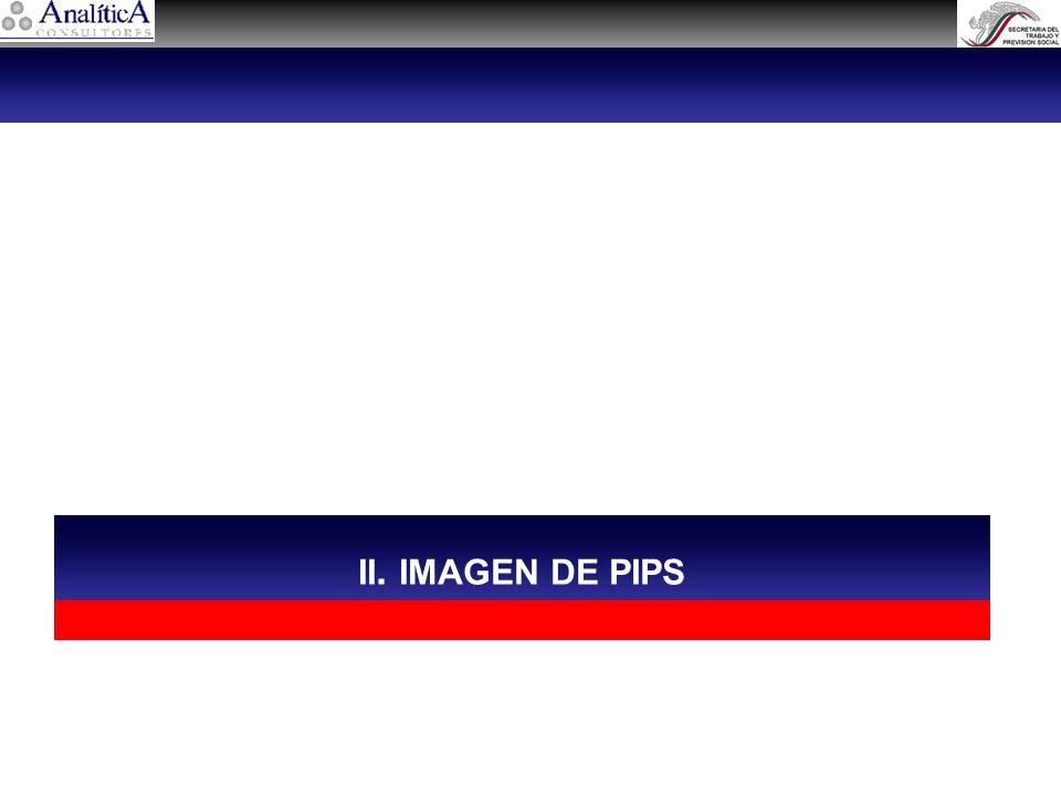 II. IMAGEN DE PIPS