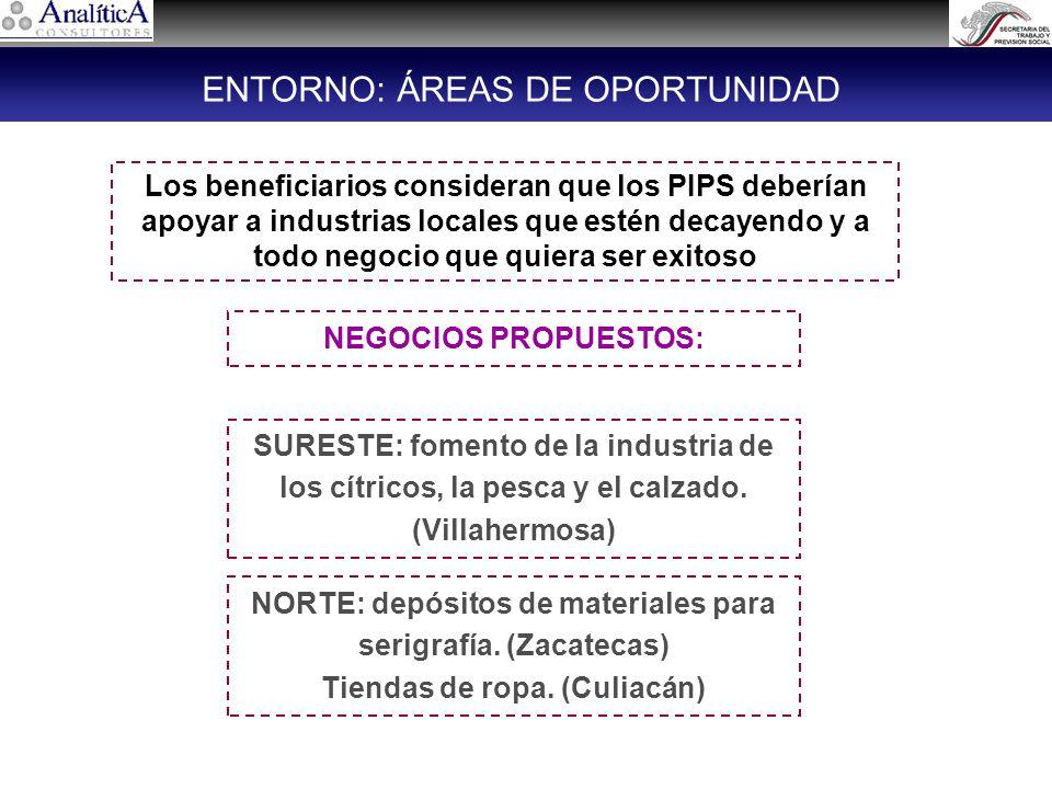 Los beneficiarios consideran que los PIPS deberían apoyar a industrias locales que estén decayendo y a todo negocio que quiera ser exitoso NORTE: depósitos de materiales para serigrafía.