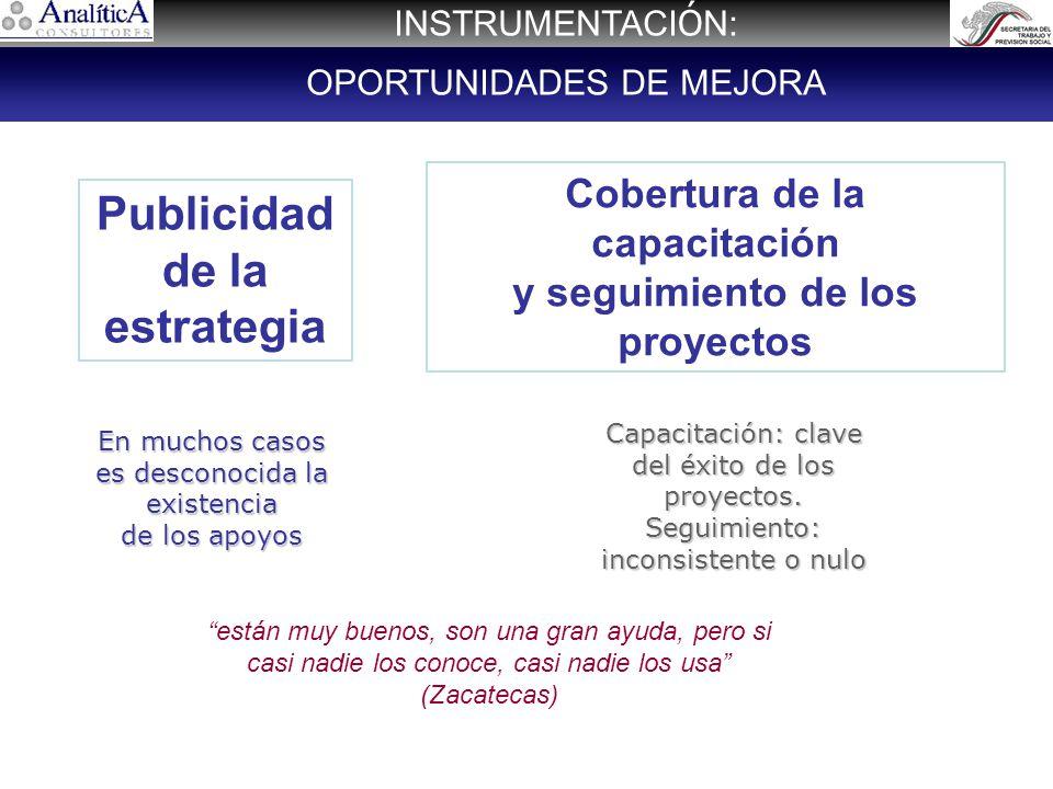 Cobertura de la capacitación y seguimiento de los proyectos Publicidad de la estrategia En muchos casos es desconocida la existencia de los apoyos Capacitación: clave del éxito de los proyectos.