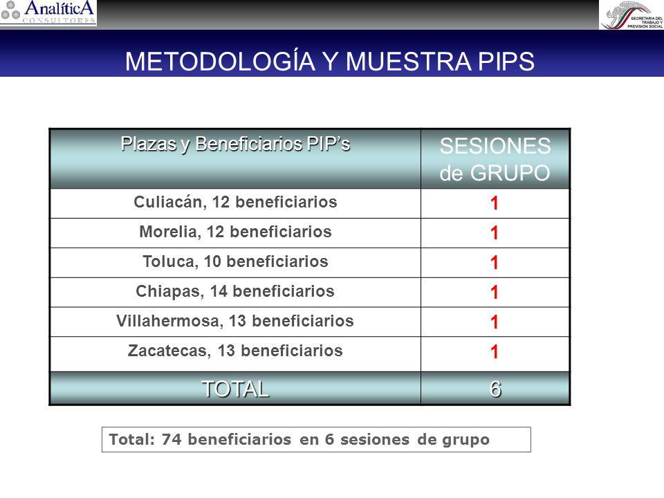 Plazas y Beneficiarios PIPs SESIONES de GRUPO Culiacán, 12 beneficiarios 1 Morelia, 12 beneficiarios 1 Toluca, 10 beneficiarios 1 Chiapas, 14 beneficiarios 1 Villahermosa, 13 beneficiarios 1 Zacatecas, 13 beneficiarios 1 TOTAL6 Total: 74 beneficiarios en 6 sesiones de grupo METODOLOGÍA Y MUESTRA PIPS