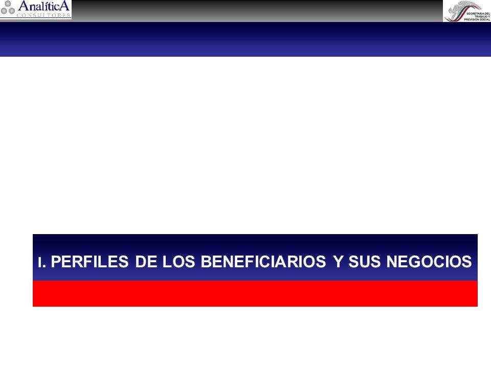 I. PERFILES DE LOS BENEFICIARIOS Y SUS NEGOCIOS
