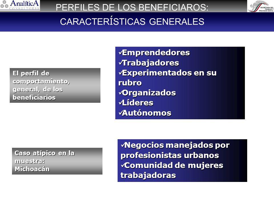 De acuerdo al reclutamiento existen beneficiarios de procedencia urbana en la mayoría de las plazas En plazas como Villahermosa, Tuxtla y Zacatecas, los servicios estatales de empleo colaboraron en el proceso de reclutamiento Beneficiarios de procedencia rural: minoritarios.