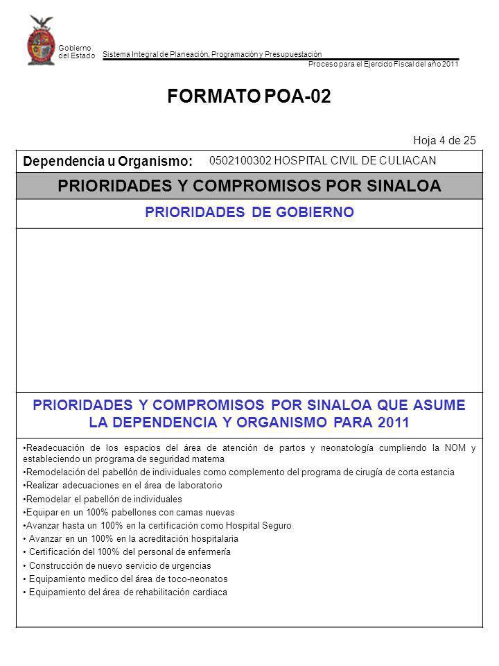 Sistema Integral de Planeación, Programación y Presupuestación Proceso para el Ejercicio Fiscal del año 2011 Gobierno del Estado FORMATO POA-02 Hoja 4