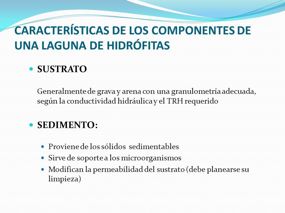 CARACTERÍSTICAS DE LOS COMPONENTES DE UNA LAGUNA DE HIDRÓFITAS SUSTRATO Generalmente de grava y arena con una granulometría adecuada, según la conduct
