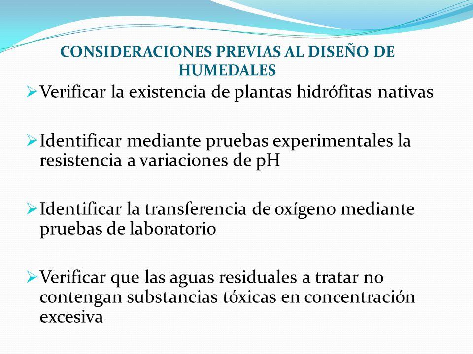 CONSIDERACIONES PREVIAS AL DISEÑO DE HUMEDALES Verificar la existencia de plantas hidrófitas nativas Identificar mediante pruebas experimentales la re