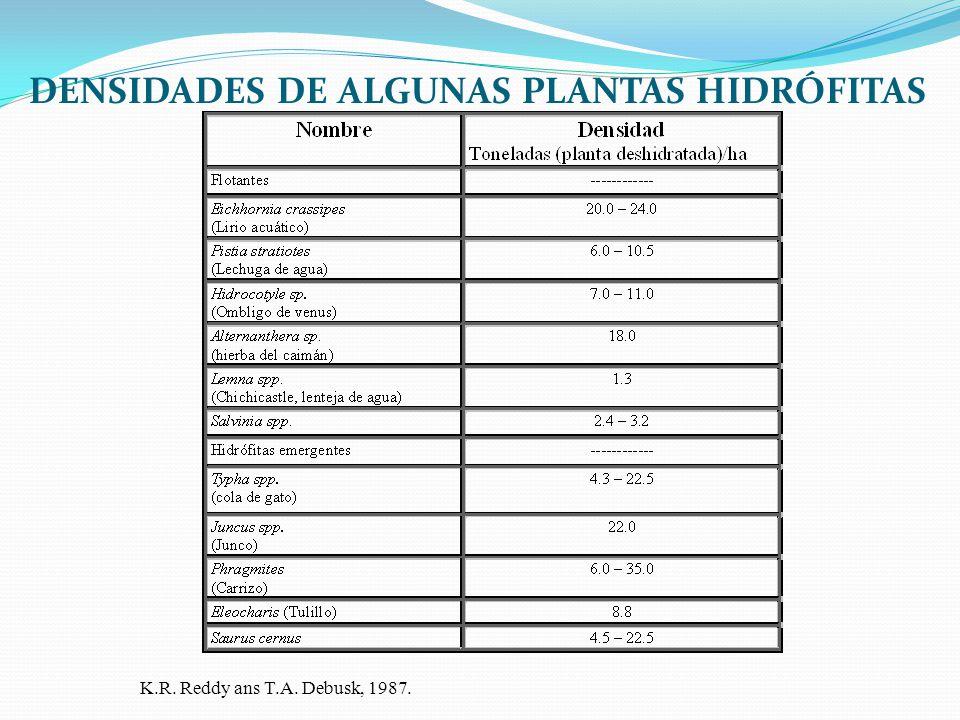 DENSIDADES DE ALGUNAS PLANTAS HIDRÓFITAS K.R. Reddy ans T.A. Debusk, 1987.
