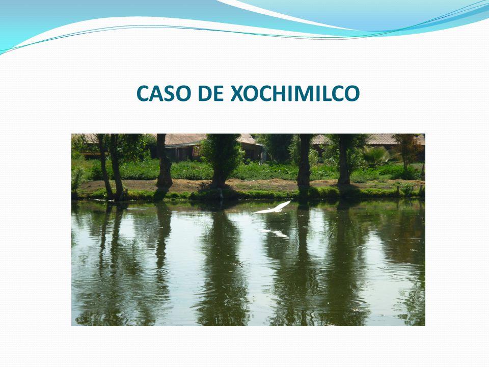 CASO DE XOCHIMILCO