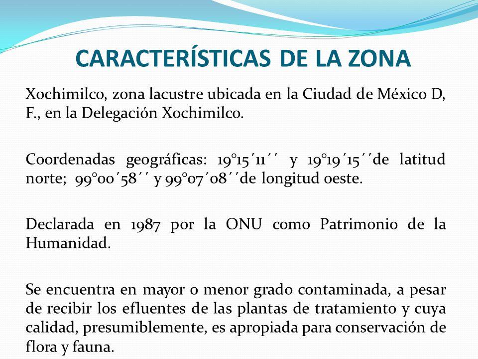CARACTERÍSTICAS DE LA ZONA Xochimilco, zona lacustre ubicada en la Ciudad de México D, F., en la Delegación Xochimilco. Coordenadas geográficas: 19°15