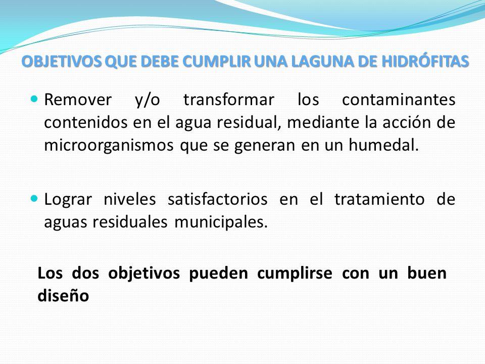 OBJETIVOS QUE DEBE CUMPLIR UNA LAGUNA DE HIDRÓFITAS Remover y/o transformar los contaminantes contenidos en el agua residual, mediante la acción de mi