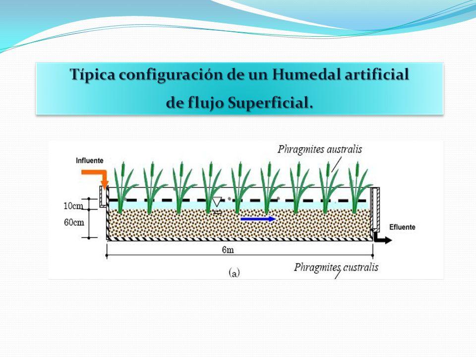 MODELO HIDRÁULICO DE FLUJO SUPERFICIAL (CONTINÚA) Donde: Q =Gasto promedio (m 3 /día) W =Ancho de la sección transversal (m) y =Profundidad (m) V =Velocidad (m/s) A s =Área superficial (m 2 ) L =longitud del humedal (m) Entonces: Permite el cálculo de la longitud compatible con el gradiente hidráulico