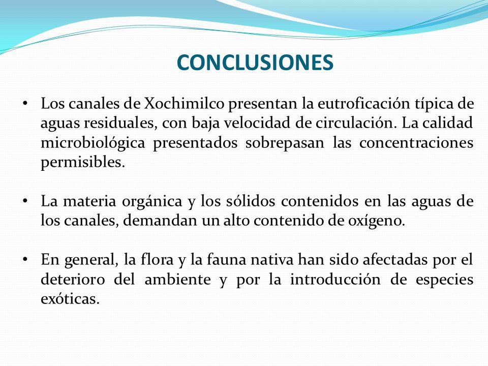 CONCLUSIONES Los canales de Xochimilco presentan la eutroficación típica de aguas residuales, con baja velocidad de circulación. La calidad microbioló
