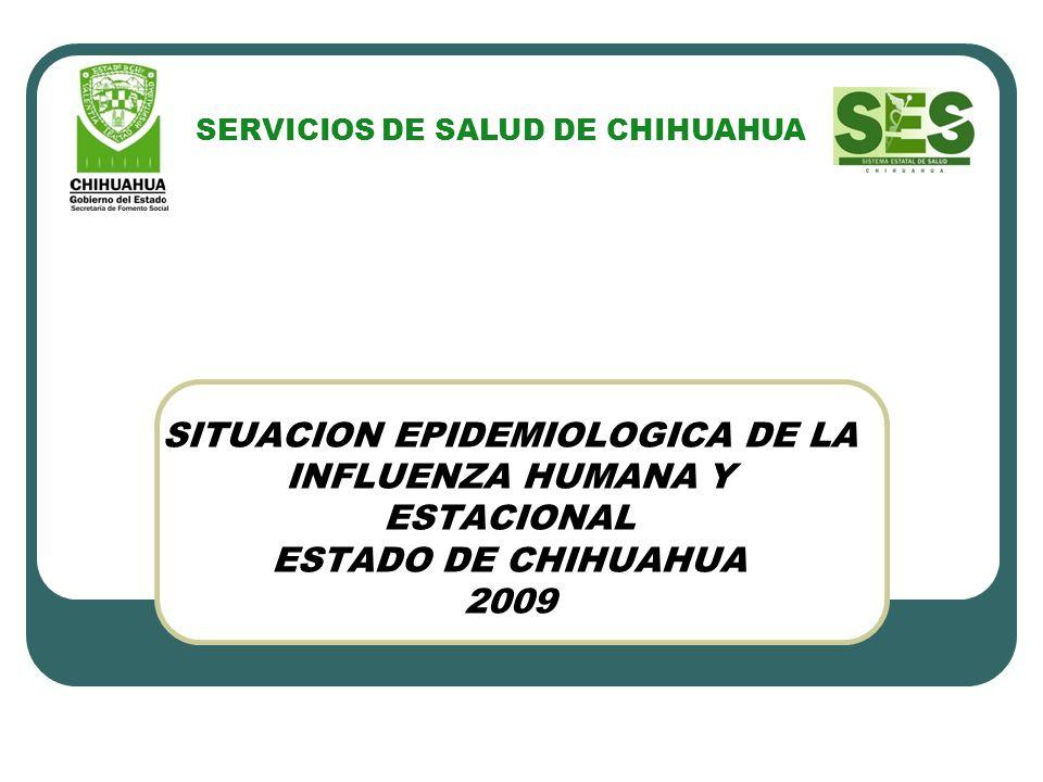 SITUACION EPIDEMIOLOGICA DE LA INFLUENZA HUMANA Y ESTACIONAL ESTADO DE CHIHUAHUA 2009 SERVICIOS DE SALUD DE CHIHUAHUA