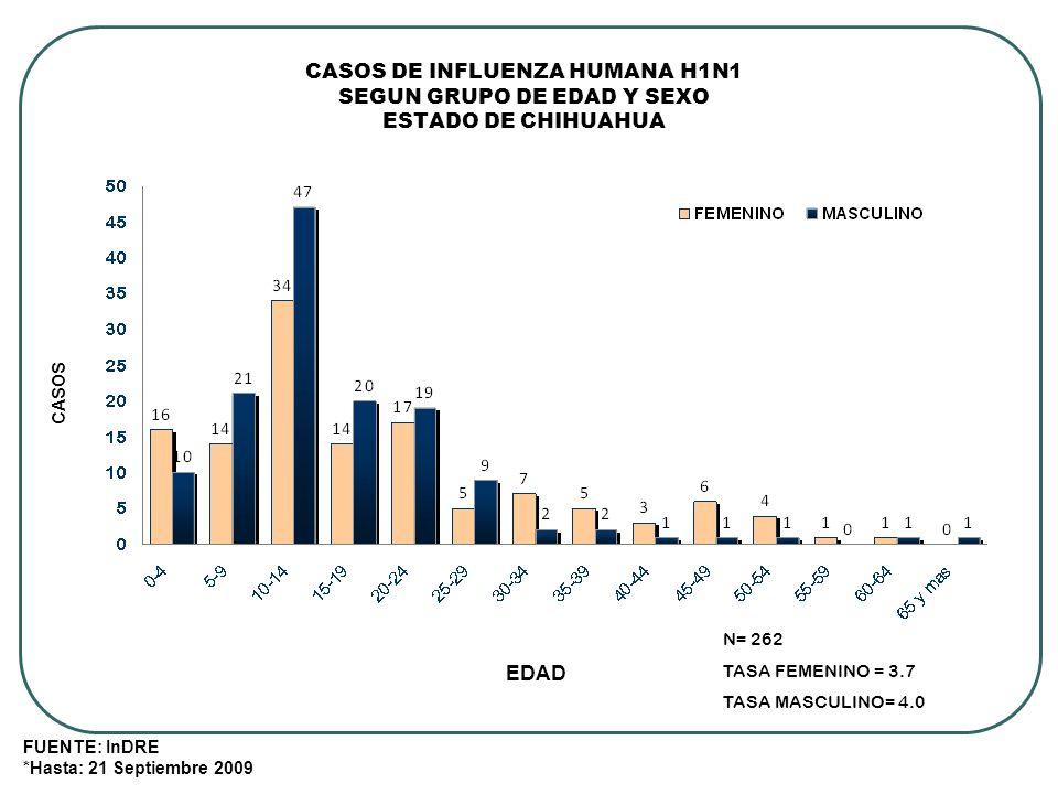 CASOS DE INFLUENZA HUMANA H1N1 SEGUN GRUPO DE EDAD Y SEXO ESTADO DE CHIHUAHUA ENERO-SEPTIEMBRE, 2009 FUENTE: InDRE *Hasta: 21 Septiembre 2009 EDAD CASOS N= 262 TASA FEMENINO = 3.7 TASA MASCULINO= 4.0