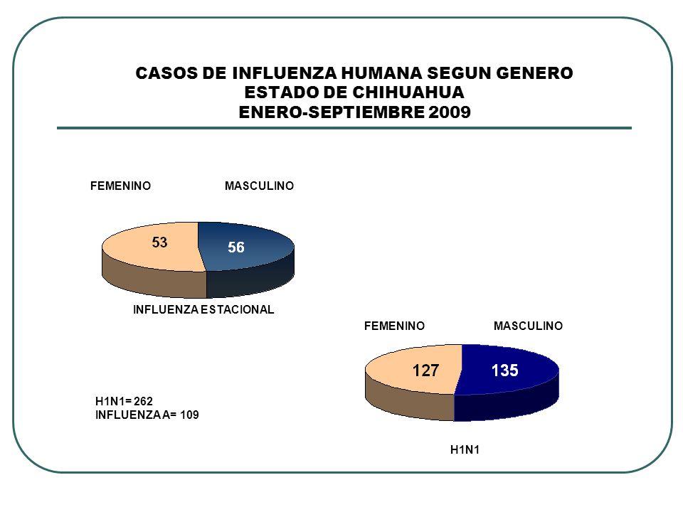 CASOS DE INFLUENZA HUMANA SEGUN GENERO ESTADO DE CHIHUAHUA ENERO-SEPTIEMBRE 2009 INFLUENZA ESTACIONAL H1N1 H1N1= 262 INFLUENZA A= 109 FEMENINOMASCULINO FEMENINOMASCULINO