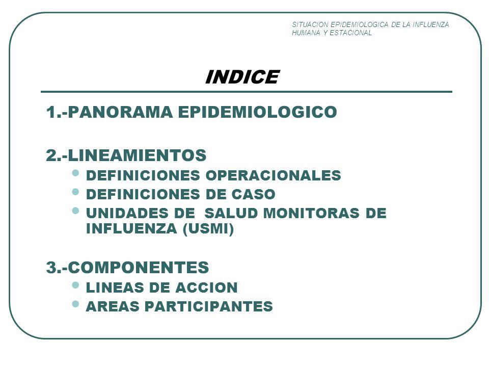 1.-PANORAMA EPIDEMIOLOGICO 2.-LINEAMIENTOS DEFINICIONES OPERACIONALES DEFINICIONES DE CASO UNIDADES DE SALUD MONITORAS DE INFLUENZA (USMI) 3.-COMPONENTES LINEAS DE ACCION AREAS PARTICIPANTES INDICE SITUACION EPIDEMIOLOGICA DE LA INFLUENZA HUMANA Y ESTACIONAL