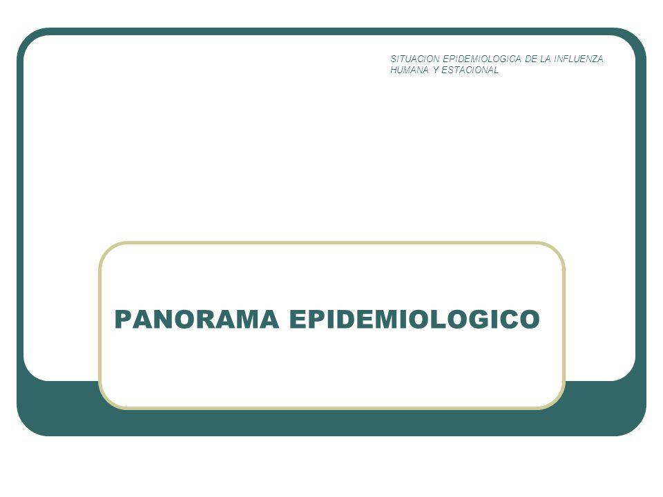 PANORAMA EPIDEMIOLOGICO SITUACION EPIDEMIOLOGICA DE LA INFLUENZA HUMANA Y ESTACIONAL