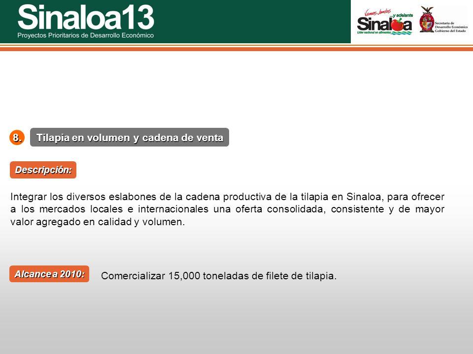 Proyectos Prioritarios de Desarrollo Económico Sinaloa25 Tilapia en volumen y cadena de venta 8. Alcance a 2010: Descripción: Integrar los diversos es