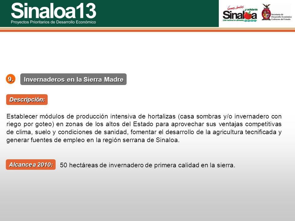 Proyectos Prioritarios de Desarrollo Económico Sinaloa25 Invernaderos en la Sierra Madre 9. Alcance a 2010: Establecer módulos de producción intensiva