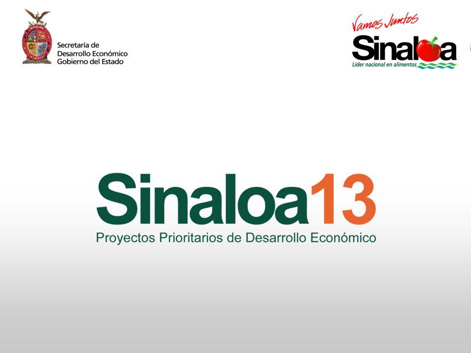 Proyectos Prioritarios de Desarrollo Económico Sinaloa25
