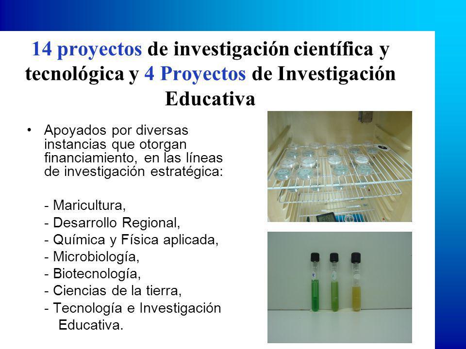 14 proyectos de investigación científica y tecnológica y 4 Proyectos de Investigación Educativa Apoyados por diversas instancias que otorgan financiamiento, en las líneas de investigación estratégica: - Maricultura, - Desarrollo Regional, - Química y Física aplicada, - Microbiología, - Biotecnología, - Ciencias de la tierra, - Tecnología e Investigación Educativa.