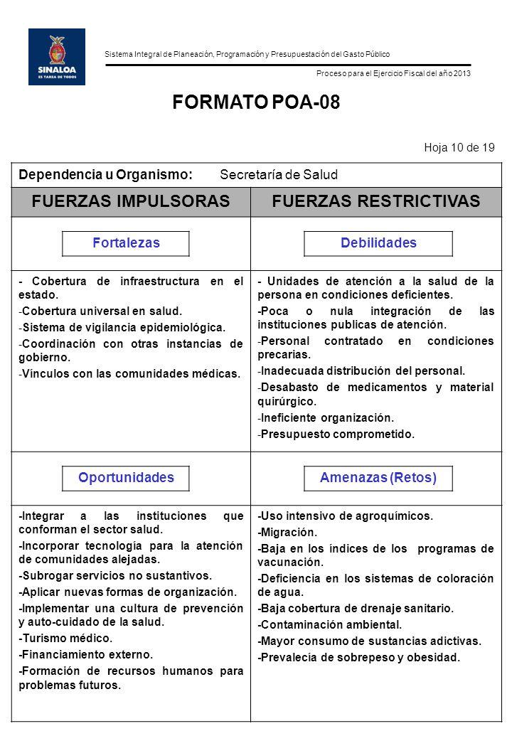 Sistema Integral de Planeación, Programación y Presupuestación del Gasto Público Proceso para el Ejercicio Fiscal del año 2013 FORMATO POA-08 Hoja 10