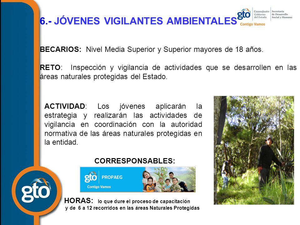 6.- JÓVENES VIGILANTES AMBIENTALES BECARIOS: Nivel Media Superior y Superior mayores de 18 años.