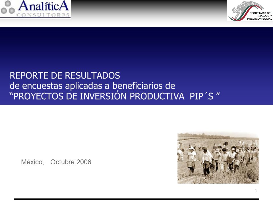 1 REPORTE DE RESULTADOS de encuestas aplicadas a beneficiarios de PROYECTOS DE INVERSIÓN PRODUCTIVA PIP´S México, Octubre 2006