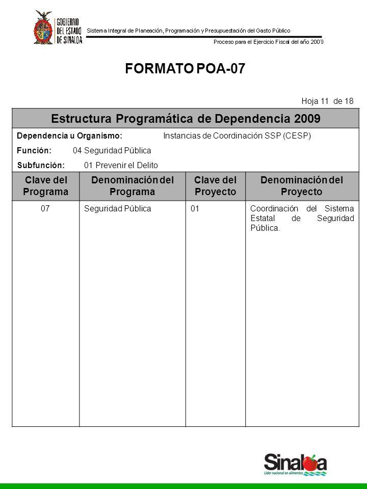 Consejo Estatal de Seguridad Pública Gobierno del Estado 9 FORMATO POA-07 Hoja 11 de 18 Estructura Programática de Dependencia 2009 Dependencia u Orga