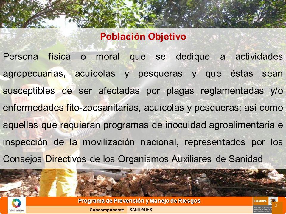 Programa de Prevención y Manejo de Riesgos Subcomponente SANIDADES 3 Población Objetivo Persona física o moral que se dedique a actividades agropecuar