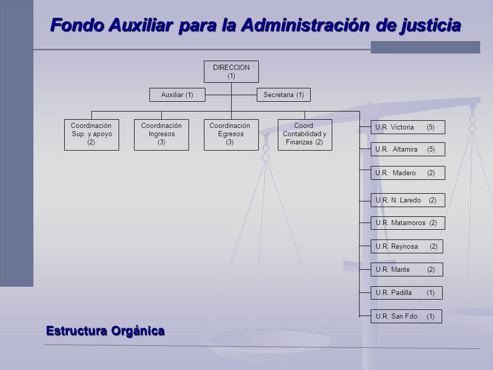 H. SUPREMO TRIBUNAL DE JUSTICIA DE TAMAULIPAS Fondo Auxiliar para la Administración de Justicia C.P.M.A. Alma Gloria Montalvo Montelongo Cd. Victoria,