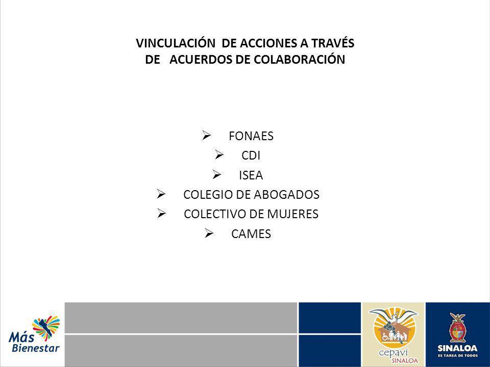 VINCULACIÓN DE ACCIONES A TRAVÉS DE ACUERDOS DE COLABORACIÓN FONAES CDI ISEA COLEGIO DE ABOGADOS COLECTIVO DE MUJERES CAMES