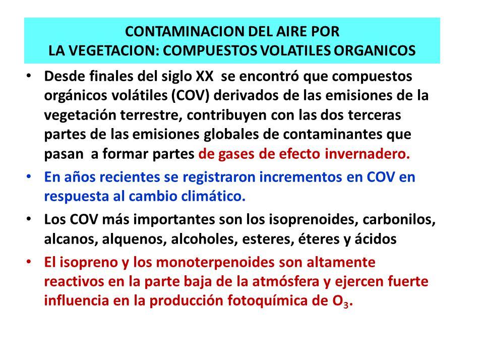 CONTAMINACION DEL AIRE POR LA VEGETACION: COMPUESTOS VOLATILES ORGANICOS Desde finales del siglo XX se encontró que compuestos orgánicos volátiles (CO