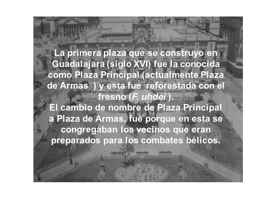 La primera plaza que se construyo en Guadalajara (siglo XVI) fue la conocida como Plaza Principal (actualmente Plaza de Armas ) y esta fue reforestada