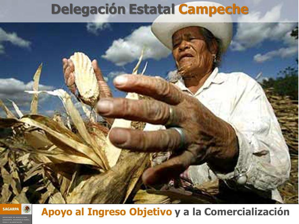 Programa Prevención y Manejos de Riesgo Apoyo al Ingreso Objetivo y a la Comercialización Delegación Estatal Campeche Apoyo al Ingreso Objetivo y a la Comercialización