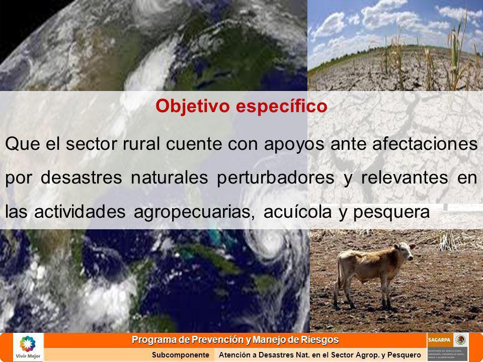 Programa de Prevención y Manejo de Riesgos SubcomponenteAtención a Desastres Nat. en el Sector Agrop. y Pesquero Objetivo específico Que el sector rur