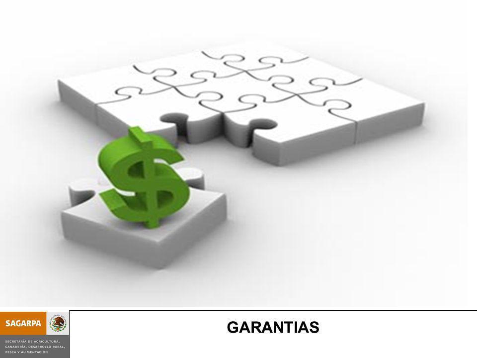 Programa de Prevención y Manejo de Riesgos SubcomponenteGarantías GARANTIAS
