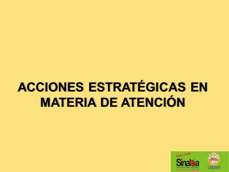 ACCIONES ESTRATÉGICAS EN MATERIA DE ATENCIÓN