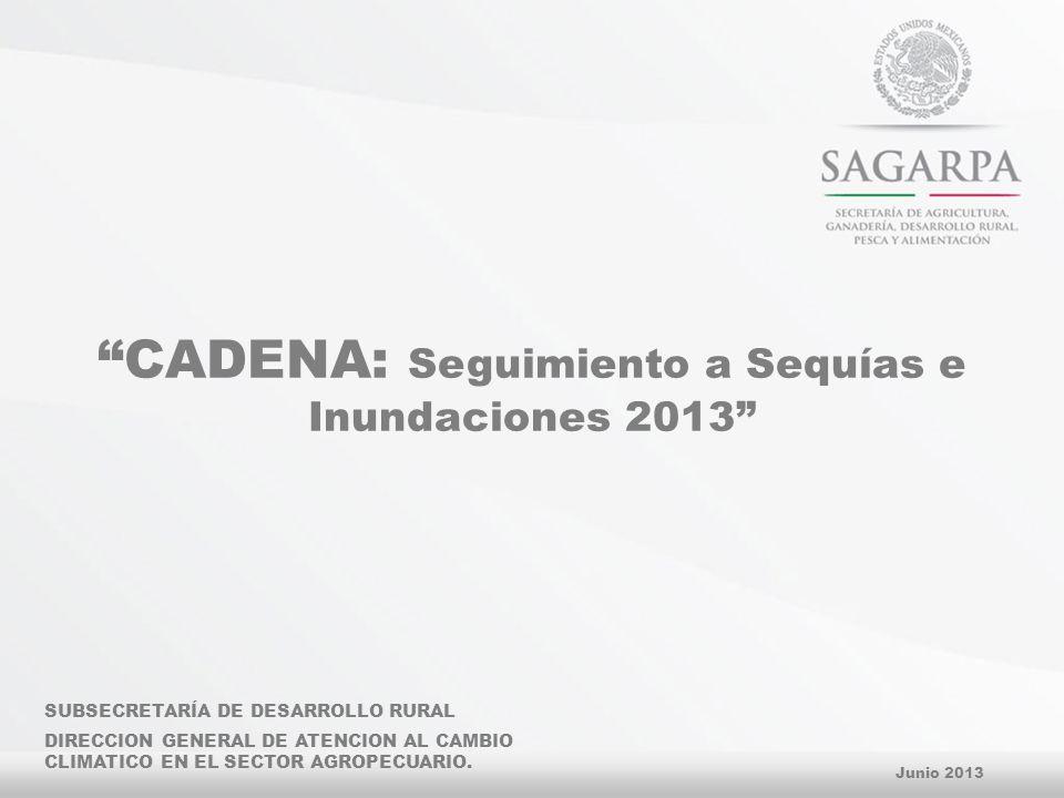 CADENA: Seguimiento a Sequías e Inundaciones 2013 Junio 2013 SUBSECRETARÍA DE DESARROLLO RURAL DIRECCION GENERAL DE ATENCION AL CAMBIO CLIMATICO EN EL SECTOR AGROPECUARIO.