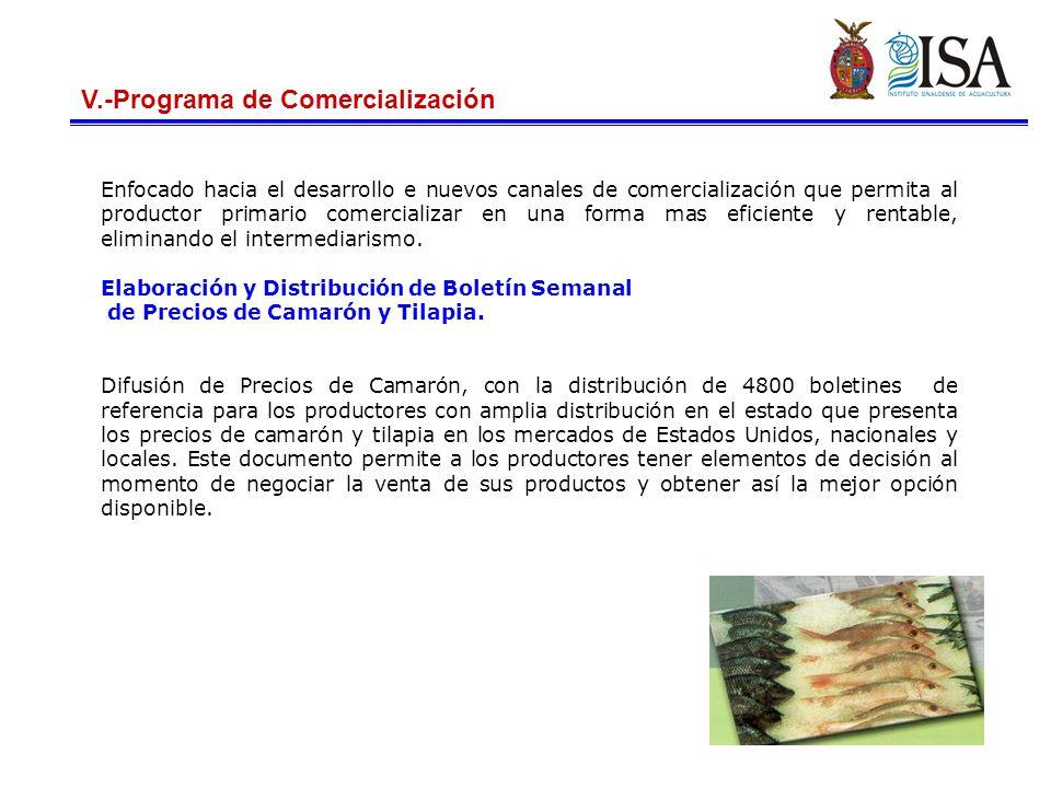 V.-Programa de Comercialización Enfocado hacia el desarrollo e nuevos canales de comercialización que permita al productor primario comercializar en una forma mas eficiente y rentable, eliminando el intermediarismo.