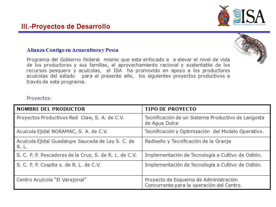 III.-Proyectos de Desarrollo Continuación…… Proyectos generados a partir del estudio de factibilidad, para el cultivo de camarón con mayor índice sanitario y de sustentabilidad.