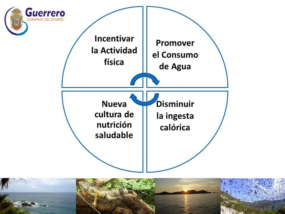 Incentivar la Actividad física Promover el Consumo de Agua Disminuir la ingesta calórica Nueva cultura de nutrición saludable