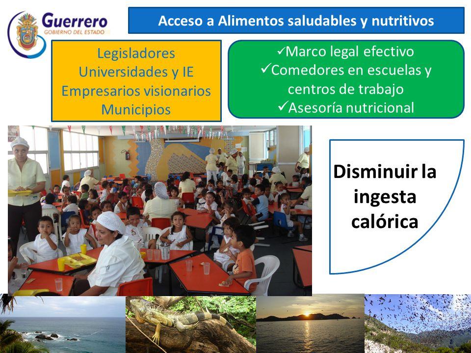 Acceso a Alimentos saludables y nutritivos Marco legal efectivo Comedores en escuelas y centros de trabajo Asesoría nutricional Legisladores Universid
