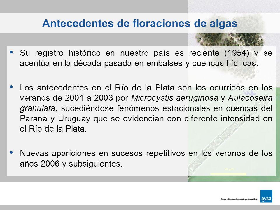 Antecedentes de floraciones de algas Su registro histórico en nuestro país es reciente (1954) y se acentúa en la década pasada en embalses y cuencas h