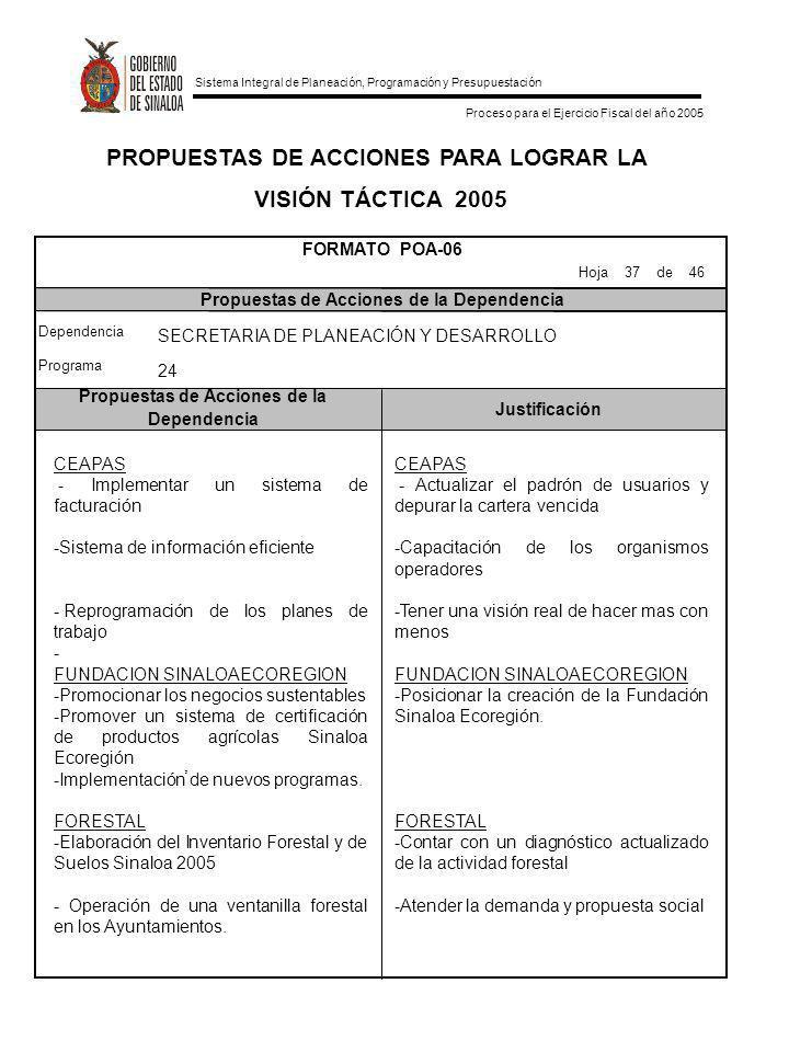 Sistema Integral de Planeación, Programación y Presupuestación Proceso para el Ejercicio Fiscal del año 2005 PROPUESTAS DE ACCIONES PARA LOGRAR LA VIS