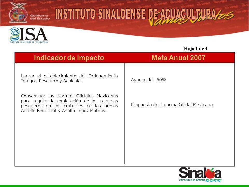 Sistema Integral de Planeación, Programación y Presupuestación del Gasto Público Proceso para el Ejercicio Fiscal del año 2005 Meta Anual 2007Indicado