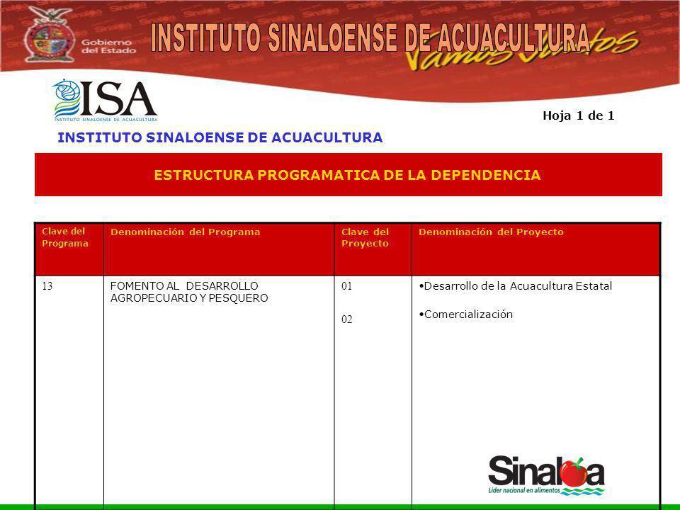 Sistema Integral de Planeación, Programación y Presupuestación del Gasto Público Proceso para el Ejercicio Fiscal del año 2005 ESTRUCTURA PROGRAMATICA