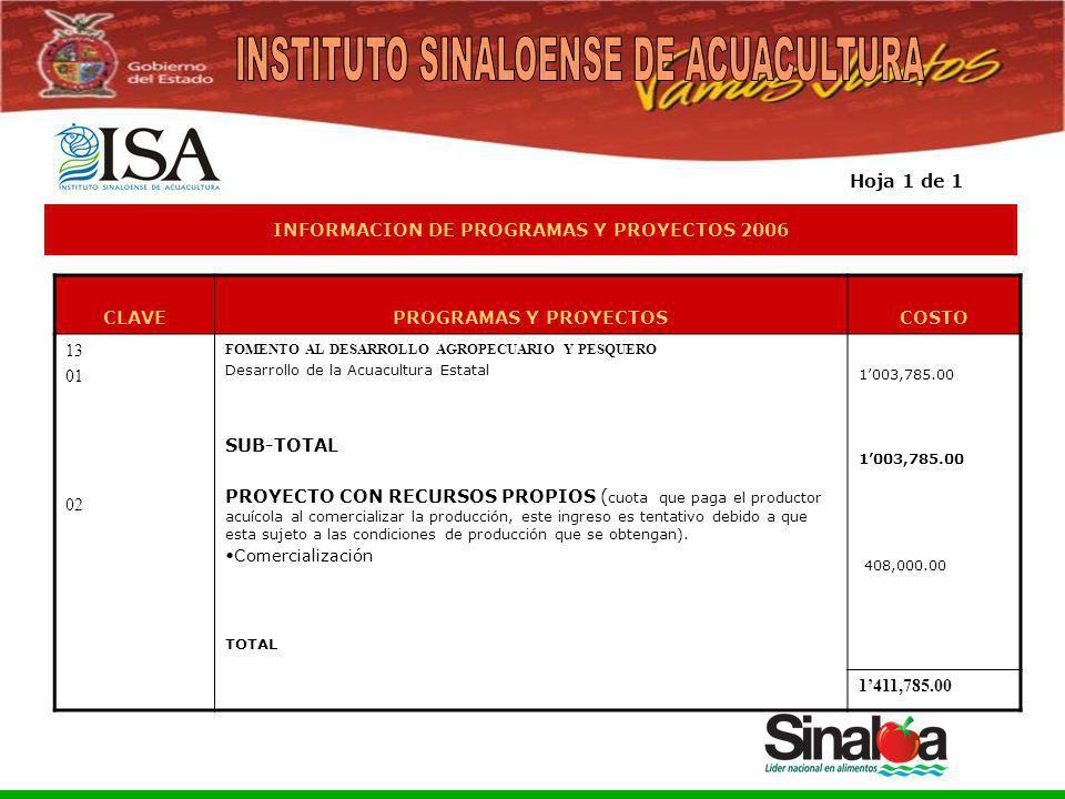 Sistema Integral de Planeación, Programación y Presupuestación del Gasto Público Proceso para el Ejercicio Fiscal del año 2005 INFORMACION DE PROGRAMA